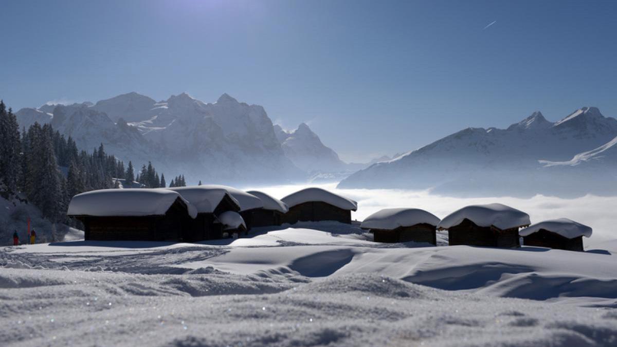 Adler Apartments, Switzerland